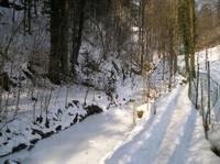Titelbild des Albums: Rettenbachklamm - Platte am 29.01.2006