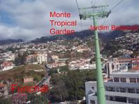 Titelbild des Albums: Madeira - Jardim Botanico & Sighteeing Tour 11.10.2010
