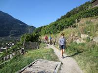Titelbild des Albums: Südtirol => Algunder Waalweg =>orf Tirol => Meran => Ebenheimkeller => Bozen 25.09.2013